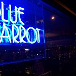 the-blue-parrot-bar-and