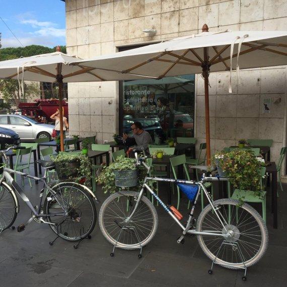 bio-100-bikes